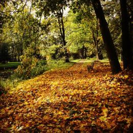 Park w Cieszkowie