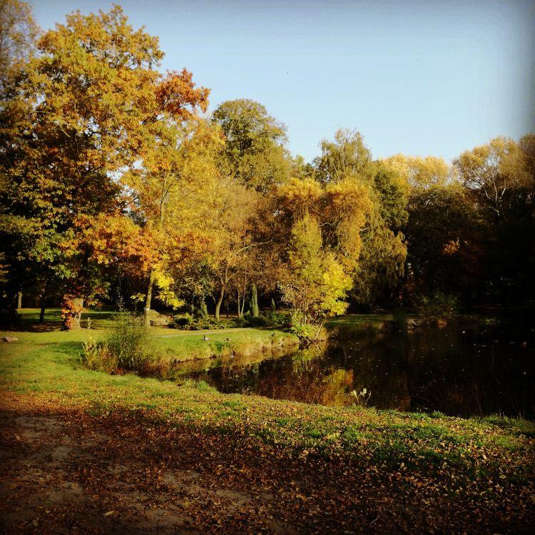 Park Cieszków