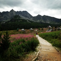 Góry są dla ludzi zachłannych na życie - cytaty o górach